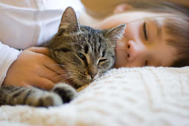 cat cuddling with girl