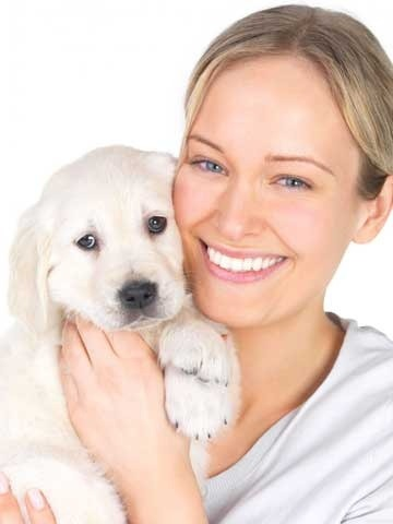 Caring For Your New Puppy Vaccination Worming Fleas Desexing