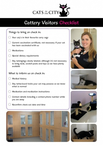 Adelaide Cats in the city cattery cat boarding checklist