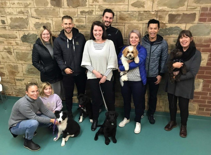 Puppy Preschool Adelaide