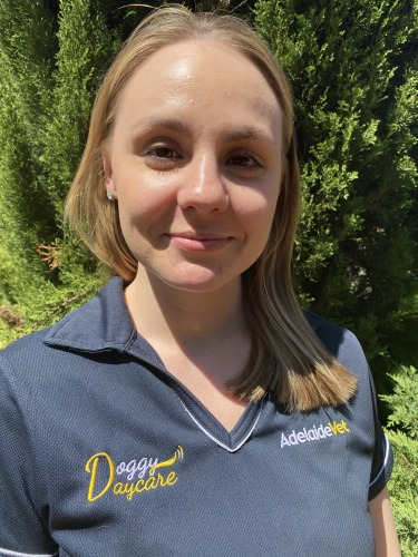 Jade Hassett Canine Educator at AdelaideVet Doggy Daycare