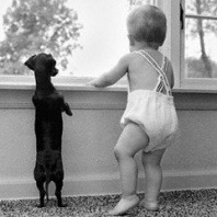 puppy and a baby