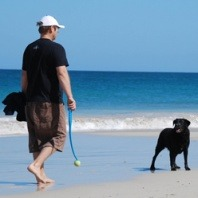 owner-walking-his-dog-at-the-beach